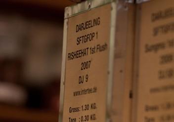 darjeeling, first flush, first flash, flugtee, schwarzer tee