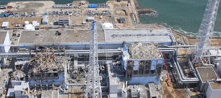 Fukushima Radioaktivität