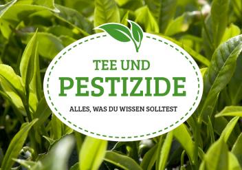 Tee und Pestizide. Alles, was du wissen solltest