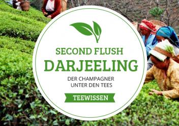 Second Flush Darjeeling - Der Champagner unter den Tees