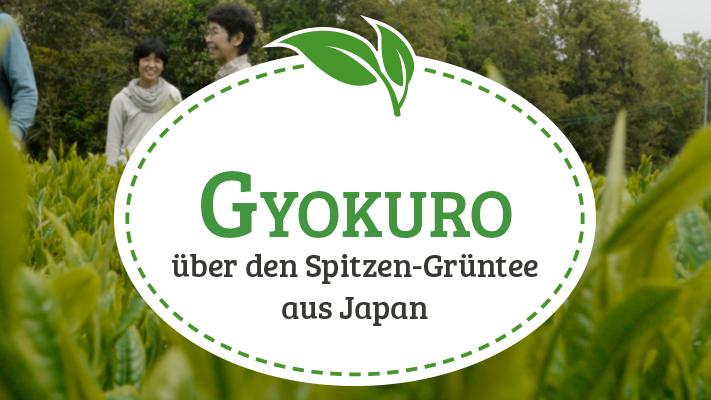 Gyokuro: Herkunft, Produktion und Zubereitungstipps</br> zum Spitzengrüntee