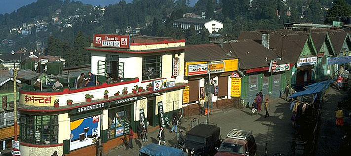 Der Teemarkt 2010 oder die Leiden eines Teehändlers