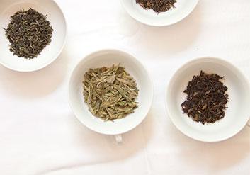 Beuteltee oder loser Tee: Offener Tee ist in der Qualität viel leichter zu beurteilen als Tee im Beutel.