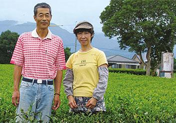 Eine unserer Teebauern aus Japan, Familie Mazumoto, die auch Shincha Tee anbieten