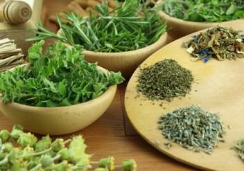 heilen mit tee, kräuter-tee, gifter kräutertee
