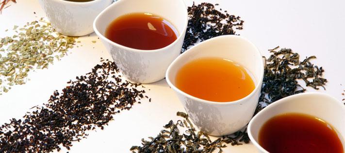 Teedaten für 2008