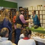 Teeseminar in Nürnberg: Teilnehmer verkosten japanischen Grüntee