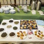Teeseminar: Wir verkosten diverse Teesorten