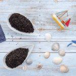 Ostfriesentee: Die aromatische Schwarzteemischung