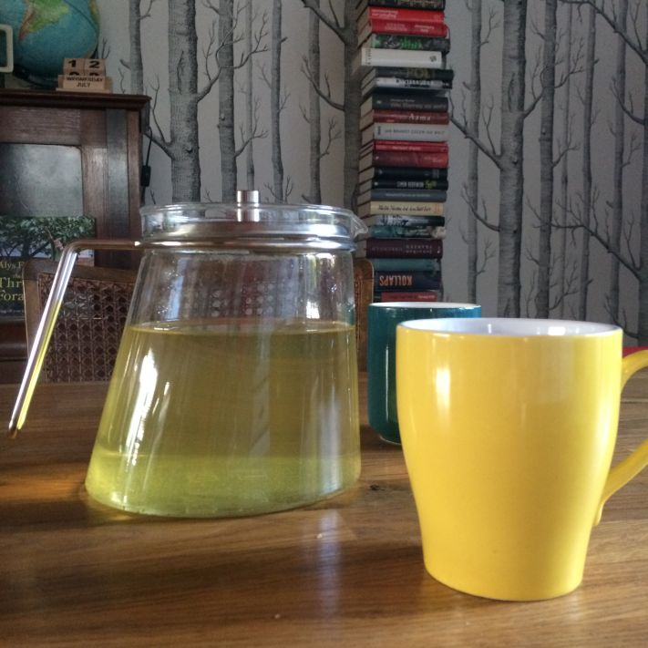 Glasteekanne von Mono zum Direktaufguss bzw. zum Aufguss mit riesigem Edelstahlsieb.
