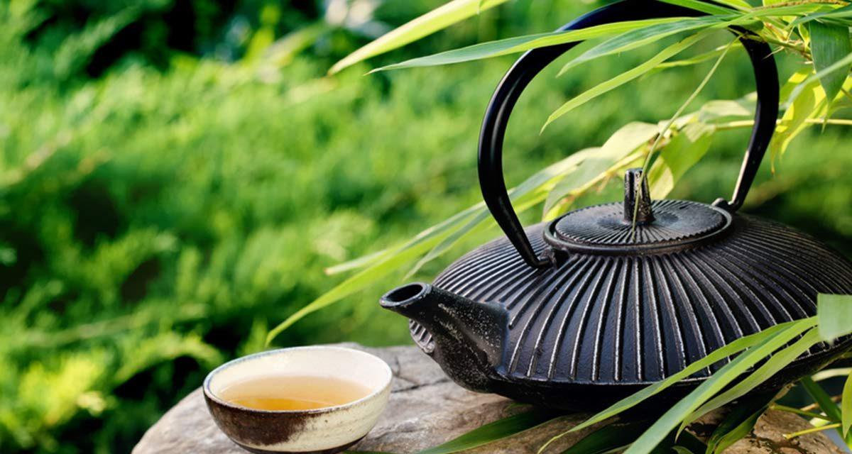 Japanische Teekultur: Ein kurzer Spaziergang durch Jahrhunderte