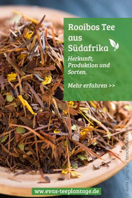 Rooibos Tee Herkunft, Produktion und Sorten
