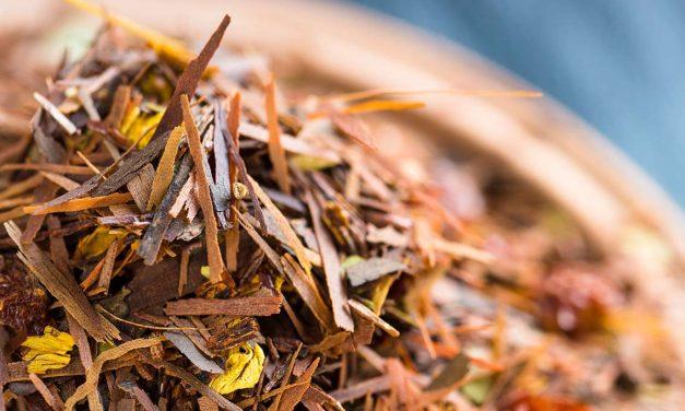 Rooibos Tee – Genuss aus Südafrika