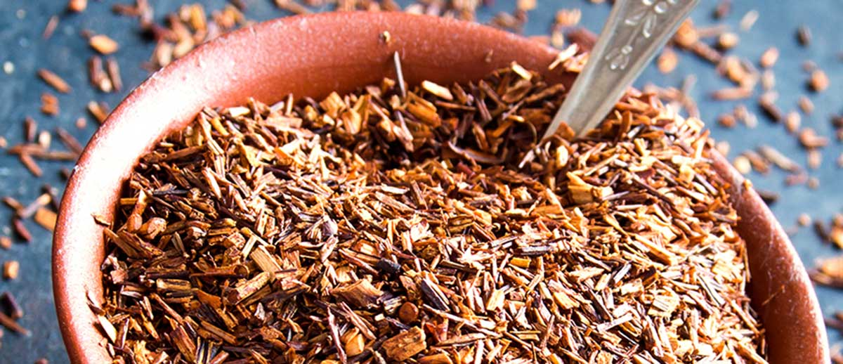 Rooibos Tee – Genuss aus Südafrika für jedermann