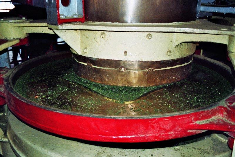 Darjeeling Tee Herkunft Produktion